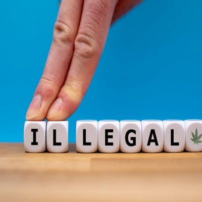 3-State Poll Shows Strong Support for Marijuana Legalization