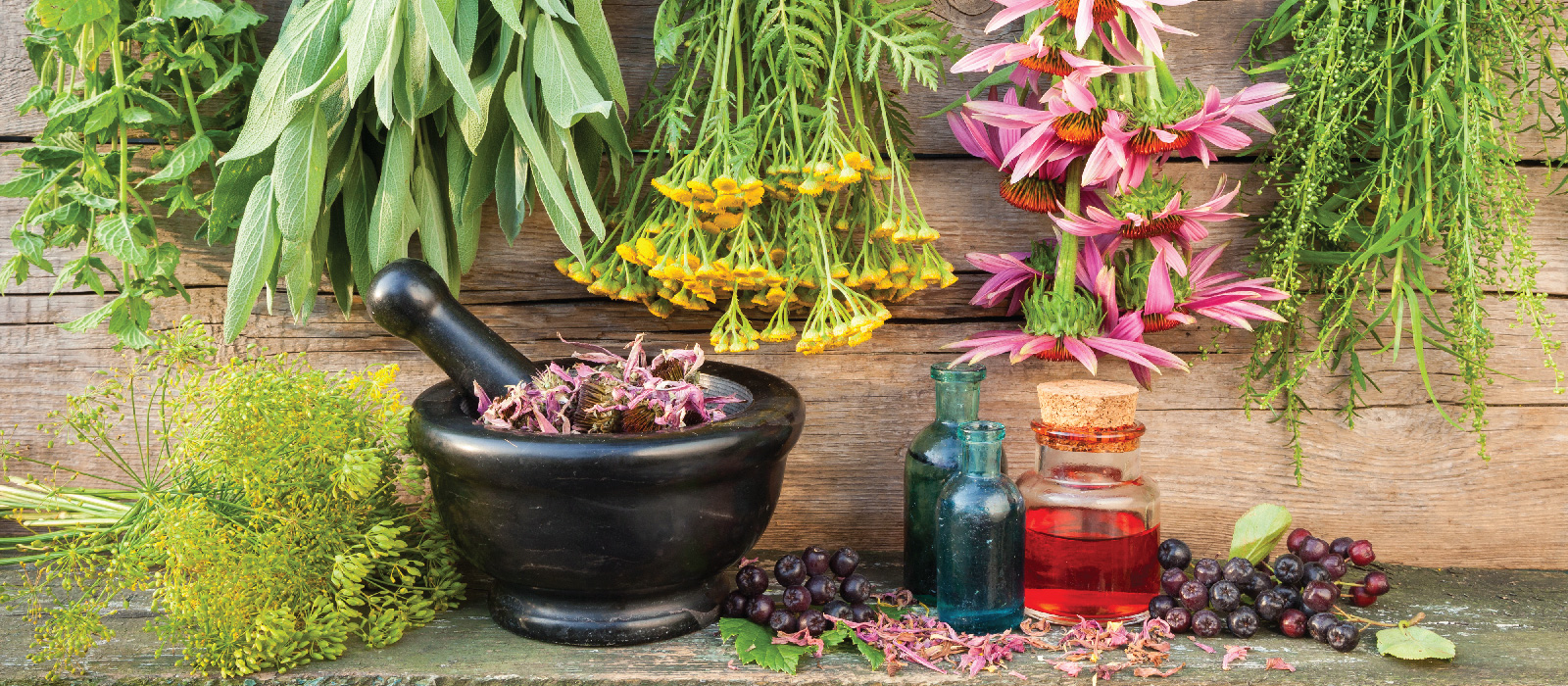 Herbal Remedies Vs Medicine For Pain Relief